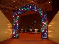 Air Filled Arch with Fairy Lights $325