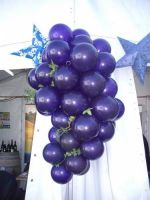 Purple Floriade Grapes $95